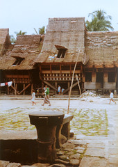 Traditional house, Nias (Elios Amati) Tags: eliosamati indonesia nias sumatra traditionalhouse