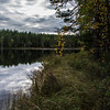 Nature (Stefano Rugolo) Tags: stefanorugolo pentax k5 smcpentaxda1855mmf3556alwr lakeside grass tree wood forest water lake hälsingland sweden sverige landscape nature squarefomat diagonal reflections serene