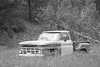 1963 Chevy (Anne Oldfield) Tags: chevy chevrolet 1963chevy busted abandoned bw blackandwhite elkhorn ghosttown montana retro vintage car pick up pickup wreck