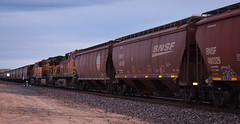 Mid train DPU's (Woodypug) Tags: dpus hackberry arizona 110317 bnsf grain westbound