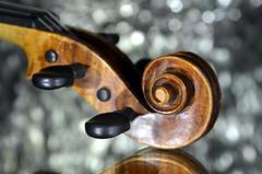Musical Instrument (christiane.grosskopf) Tags: violin violine schnecke macro macromondays memberschoicemusicalinstruments musicalinstruments memberschoice scroll fiddle geige