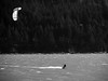 2017.10.08_Squamish Trip-40.jpg (Bil Derby) Tags: squamish pnw pacificnorthwest ocean windsurfing