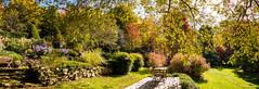 Arboretum de la Sédelle sous le soleil - Crozant - Creuse - Nouvelle-Aquitaine - France (vanaspati1) Tags: arboretum de la sédelle crozant creuse nouvelleaquitaine france vanaspati1 europe paysage jardin garden soleil nature arbres