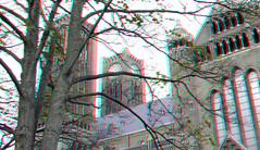 Kathedrale Basiliek St-Bavo Haarlem 3D