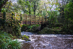 Dingle Bridge (GarethBell) Tags: dingle llangefni wales anglesey northwales bridge river water trees leaves flowing canon canon6d 35mm wooden