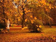 Autumn in the Eutin Castle Park (Ostseetroll) Tags: deu deutschland eutin geo:lat=5413538302 geo:lon=1062091478 geotagged schleswigholstein schlosspark herbst herbstfarben autumn autumnleafcolours