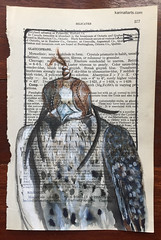 2017Inktober Day24 Blind (karinaltarts) Tags: art inktober ink recycled paper artdaily artchallenge birds blink falcon