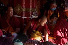 Jokhang Temple Lhasa, Tibet 2017 (reurinkjan) Tags: tibetབོད བོད་ལྗོངས། 2017 ༢༠༡༧་ ©janreurink tibetanplateauབོད་མཐོ་སྒང་bötogang tibetautonomousregion tar ütsang lhasa jokhang lhadentsuglakhang jowokhang ཇོ་ཁང་ monkགྲྭ་བ།grwaba tibetanབོད་པböpa tibetanpeopleབོད་མིbömi བོད་འབངསbömbang thewildfolksoftibetབོད་སྲིནbösin tibetanpeopleབོད་རིགསbörik faceགདོང་པ་dongpa གདོང༌dong གདོང་ཁdongkha portrait portraiture facecolorགདོང་མདོགdongdok portrayal picture photograph likeness