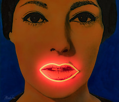Painting with neon lights by Martial Raysse - Stedelijk museum Amsterdam (CapMarcel) Tags: painting with neon lights stedelijk museum amsterdam martial raysse