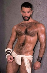Pintrest265 (Hogwilde1) Tags: chest hairy hotmen men sexymen hunk stud handsome