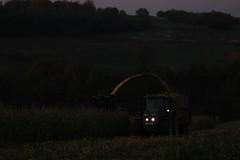 Corn Silage 2017 (Winiarsky) Tags: john deere 6150m 7300 jd fortschritt corn silage poland autumn