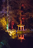 8A0A7426 (ct_purley) Tags: isle wight canon 5d mark iv robin hill robinhill squirel run diwali night time lights