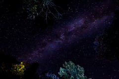 Lichtungshimmel (Setekh81) Tags: astro himmel milchstrase wald