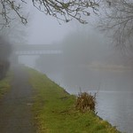 Waterway Wildlife thumbnail