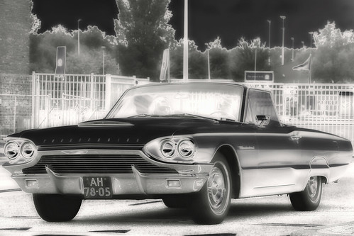 Ford Thunderbird Convertible 1964 - B&W (1343)