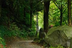 DSC_3899-35 (zunsanzunsan) Tags: 東平田 生石 生石神社 神社 秋 酒田市