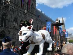 [5月13日限定]〜3年に1度の奇祭〜街中ネコだらけ!ベルギー・イーベルの猫祭り