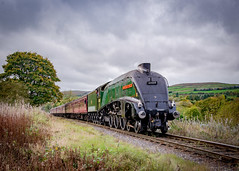 Class A4, No 60009, Union of South Africa (chromaphoto uk) Tags: elr eastlancsrailway preserved steam railway a4 60009 unionofsouthafrica union south africa irwell valley vale streak nikon d600 24120