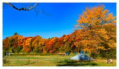 Autumn Arrives (Timothy Valentine) Tags: autumn 2017 clichésaturday large pony color honeypothill 1017 foliage stow massachusetts unitedstates us
