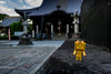 Banna-ji (RW Sinclair) Tags: 2017 asia autumn fall japan october sony a6000 alpha csc digital milc mirrorless danbo danboard neko cat danboneko shrine toy japanese figure square banna bannaji shinto ダンボール ダンボー 猫 鑁阿寺 足利市 足利 日本 おまちゃ ashikaga tochigi