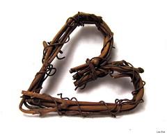 Love Spirals (Lisa Zins) Tags: lisazins macro monday macromondays macromonday spiral heart vine twigs october 2017 october23 canon sx150 love spirals shape grapevine craft symbol