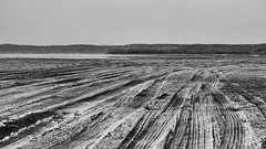 Traces (Pluie du matin) Tags: hatman ocean hourtin gironde france nb bw monochrome traces scar track mark