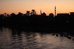 Ägypten Oktober 2017 244 (izzaga) Tags: nile nil minarett palmen palm tree water sunset sonnenuntergang egypt ägyptenoktober2017