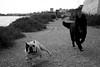 making friends (pepe amestoy) Tags: blackandwhite dogs dof elcampello spain fujifilm xe1 carl zeiss c biogon 2835 zm t m mount