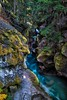 Stream of light (Matt Straite Photography) Tags: forest waterfall water stream landscape river glacier tree