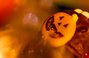 Happy Halloween!! (Tomo M) Tags: halloween macromondays jackolantern sweet chocolate bokeh october trickortreat light dof