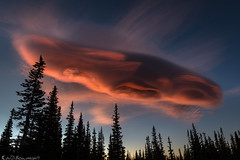 October clouds 4: the mothership has returned (Bill Bowman) Tags: lenticularcloud sunrise burnmeadow frontrange colorado rockymountains ufo mountainresearchstation