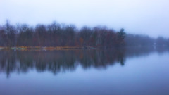 These Mist Covered Waters (Bob's Digital Eye) Tags: 2017 bobsdigitaleye canon canonefs1855mmf3556isll flicker flickr fog laquintaessenza lake mist t3i h2o trees water