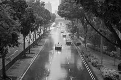 Monsoon season has arrived (Samsul Adam) Tags: rain monsoon tropic tropical weather singapore d800 2470mm f28 nikon