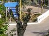 Ψίνθος (Psinthos.Net) Tags: ψίνθοσ psinthos autumn november νοέμβριοσ νοέμβρησ φθινόπωρο φύση nature trees δέντρα βρύση βρύσηψίνθου βρύσηψίνθοσ περιοχήβρύση vrisi vrisiarea vrisipsinthos noon μεσημέρι μεσημέριφθινοπώρου φθινοπωρινόμεσημέρι μέρα day road δρόμοσ γεφύρι bridge signs πινακίδεσ ακακία δέντρο tree acacia treetrunk κορμόσδέντρου sidewalk πεζοδρόμιο πλακόστρωτο pavement planetree leaves φύλλα πλάτανοσ φύλλαφθινοπώρου φθινοπωρινάφύλλα autumnleaves light shadow sunlight φώσ σκιά φώσήλιου φώσηλίου eucalypt ευκάλυπτοσ treebranches κλαδιάδέντρων χόρτα greens