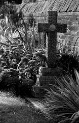 Remembering Margaret (Richie Rue) Tags: nikon f801 film analogue analog monochrome mono blackandwhite bnw bw cemetery grave remembrance remember headstone cross stone plants foma fomapan 200 champion promicrol