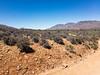 APC_0584 (TruffShuff) Tags: 2017 ca california ridgecrest may2017