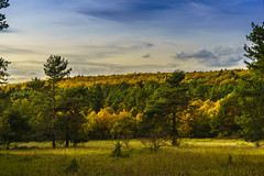 Herbstwanderungen (9) (uschmidt2283) Tags: a7r blätter bäume dolmar dolmarfeld hdr herbst landschaften laub lichtoutdoor panorama