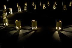 DSC_7554 (sayo-tsu) Tags: ライト