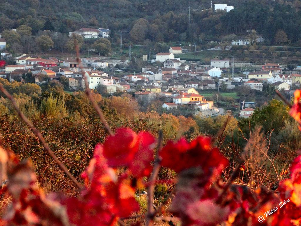 Águas Frias (Chaves) - ... a Aldeia para além das folhas da vinha ...