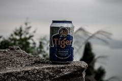 _MG_0088 (Nguyễn Quốc Phi) Tags: bia tiger biatiger quynhon thanh phố mây thanhphotrenmay