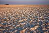 Makgadikgadi Pans detail (NettyA) Tags: 2017 africa botswana makgadikgadibasin ntwetwepan saltpan travel menoakwena landscape morning light dryseason detail