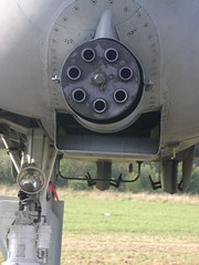 "Fairchild Republic A-10 Thunderbolt II 1 • <a style=""font-size:0.8em;"" href=""http://www.flickr.com/photos/81723459@N04/36817520823/"" target=""_blank"">View on Flickr</a>"