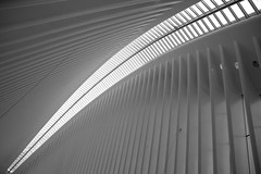 New York_WTC (CURZU@) Tags: newyorknuevayork wtc worldtradecenter manhattan nyc monocromo bw 11s canon eos80d 80d canoneos canoneos80d