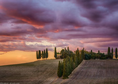 Tuscany hills, cypresses, houses and Gladiator (Robert Schüller) Tags: tuscany gladiator cypress alley san quirico dorcia italy