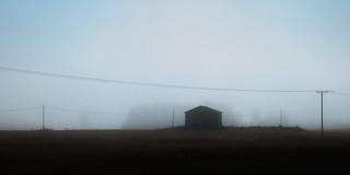 Fog / Sumu