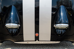 Asphalt gazer (GmanViz) Tags: gmanviz color car automobile vehicle detail austinhealey sprite bugeye frogeye hood headlights grille stripes nikon d7000