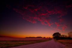 Kansas sunset (·tlc∙) Tags: landscape sunset kansas trees corn field clouds red sky green grass dirt road lotsoftags