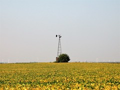 Wounded And Surrounded By Aliens (ilgunmkr - Mourning The Loss Of My Wife Of 52 Year) Tags: windmillwednesday windmill illinois rural ruraldecay bureaucountyillinois explored