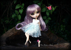 A silent distraction (pure_embers) Tags: pullip galene sisters doll dolls photography leeke obitsu uk england laura leekeworld wig lavender rose pure embers pretty dark pureembers jun planning lavendarrose japan japanese fashion girl cute pullipgalene forest butterfly natcase1 dress woods story