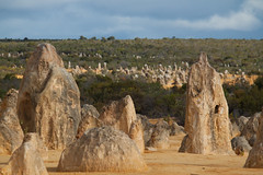 The Pinnacles, Western Australia (hectordotlee) Tags: sunny sand dessert nambungnationalpark pudding australia cervantes tourist canon canon500d desert westernaustralia attraction biodiversity 500d spring scenic seashells sky perth thepinnacles travel limestone outdoor nambung au